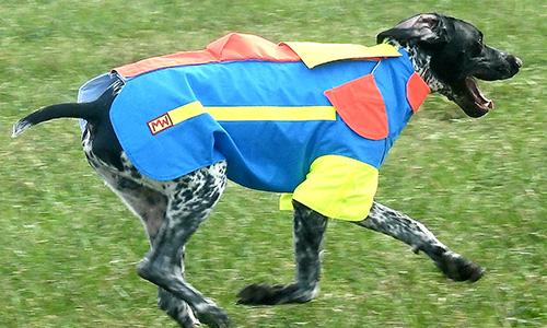 Hundeschutzwesten - hohe Durchstoßfestigkeit - vom Hersteller